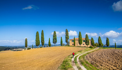 Foto op Canvas Toscane Scenic Tuscany landscape with farmhouse and cyclist on a sunny day, Italy