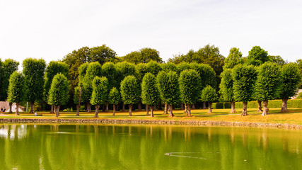 Beautiful green park and its reflection in the lake