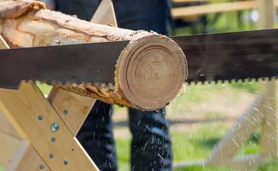 Forstwirtschaft - 2 Männer sägen einen Baumstamm, Späne fliegen durch die Luft. Selektiver Focus