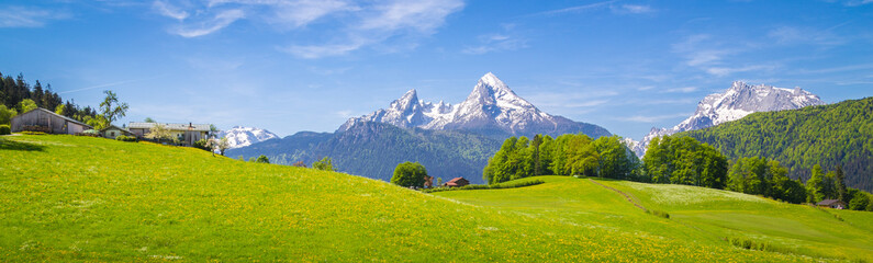 Photo sur Plexiglas Alpes Idyllic landscape in the Alps with blooming meadows and farmhouse in summer