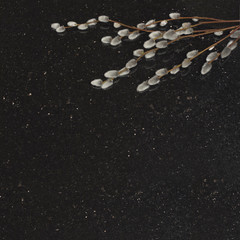 Willow branches on star galaxy granite counter