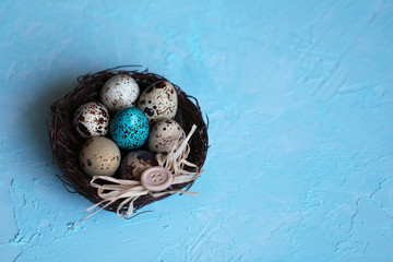 Quail Easter eggs in a nest on a blue background