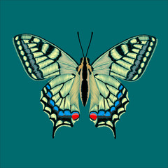 Papilio machaon butterfly design for clothing. Decorative element for embroidery, patches and stickers.