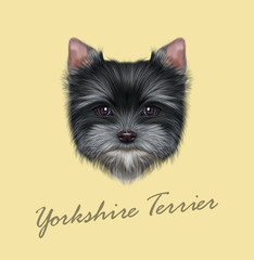 Vector Illustrated portrait of Yorkshire Terrier puppy