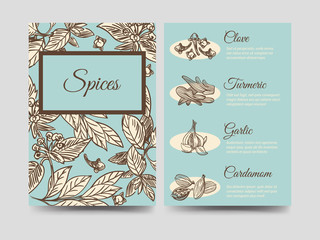 Popular hand drawn spice vintage flyers template, vector illustration. Front and rear sides template