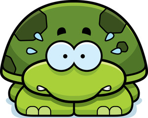 Nervous Little Turtle