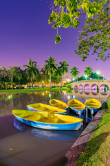 Boats on the lake in a park at night