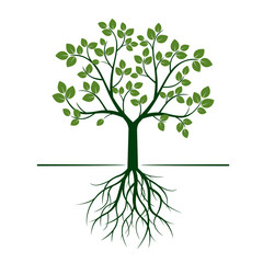 Green Tree with Roots and Leafs. Vector Illustration.
