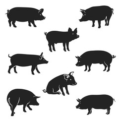 Pigs Black / Pork icon. Vector Image, pig silhouette, in Curl Tail pose, isolated on white background.