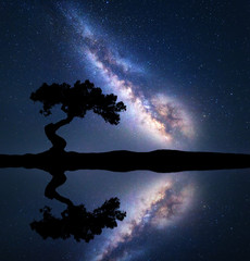Milky Way with alone crooked tree on the hill near the river with sky reflection in water. Colorful night landscape with milky way, starry sky and lake in summer. Space background. Astrophotography