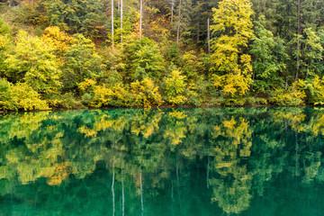 Italy, Trentino Alto Adige, Non valley, reflection of autumn trees Tovel Lake