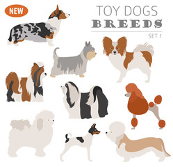 Miniature toy dog breeds, set icon isolated on white . Flat style