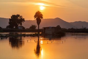 Sunrise in the marsh of Almenara. Castellón. Spain