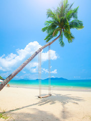 Fototapete -  beach with coconut palm trees and swing