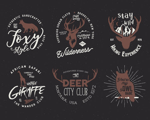 Wild animal badges set. Included giraffe, owl, fox and deer shapes. Stock vector isolated on dark background. Good for tee designs