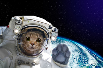 Cat astronaut in space on background of the globe. Elements of this image furnished by NASA. Fototapete