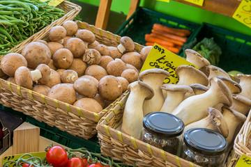 Auslage Speisepilze Kräutersaiblinge und Champignons