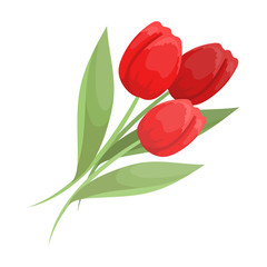 Bouquet of red tulips. Easter single icon in cartoon style vector symbol stock illustration.