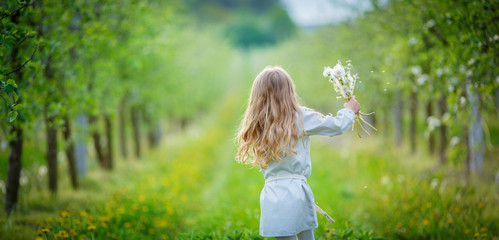 The girl runs through the orchard between the green apple trees, holding in her hand a bouquet of white dandelions
