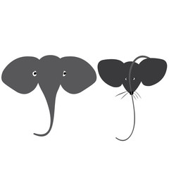 the elephant and the mouse (like brothers)