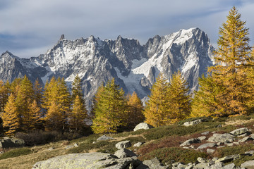 Autumn at the lake Arpy with colorful trees and the Grandes Jorasses, Mont Blanc massif, in the background .(Lake Arpy, Morgex, Aosta province, Aosta Valley, Italy, Europe)