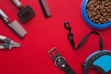 Collar, bowl with feed, leash, delicacy, combs and brushes for dogs. Isolated on red background