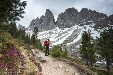 Funes Valley, Dolomites, South Tyrol, Italy. Hiker admires the Peaks of the Odle from the Alta Via Adolf Munkel