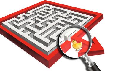 Ducky in a maze.