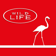 "Flamingo on a red background with the inscription ""wild life"". Vector illustration."