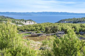 Landscape from beautiful Croatian island, Hvar, Croatia