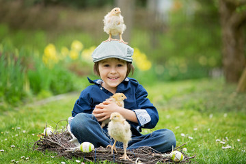 Cute little preschool child, boy, playing with easter eggs and chicks