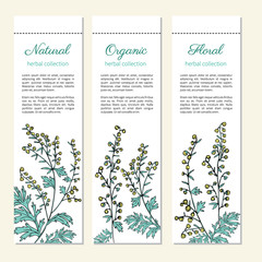 Artemisia absinthium, absinthe wormwood hand drawn vector ink color sketch isolated on white, Absinthe plant, Doodle Healing, Vector vertical banner, label for cosmetic, design package, textile