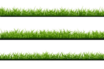 Vector realistic isolated green grass borders on the white background for decoration.