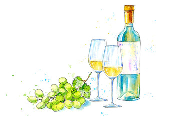 Bottle of white wine, glasses and grapes.Picture of a alcoholic drink.Watercolor hand drawn illustration.