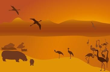 Silhouettes of hippopotamuses, a flamingo and cranes on lake