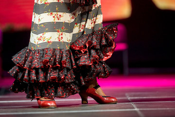 Woman dance flamenco skirt and shoes concert for print