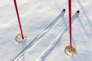 Off-track skis and ski poles on snow