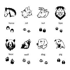 Set of different Animals Silhouettes and Trails with name. Vector Set of Black Animal head isolated on white background.Hand Drawn Vector Illustration.