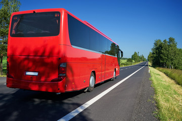 Fotobehang - The red bus traveling on asphalt road lined avenue of trees in a rural landscape on a bright sunny day