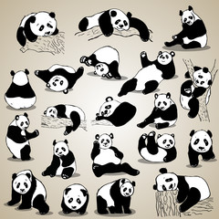 Cute cartoon panda set icons. Black white hand drawn doodle animal.