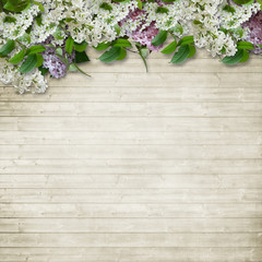 Border of flowers of lilac and bird cherry on wooden background