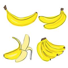 Hand draw banana colorful set