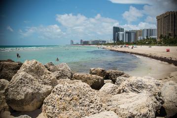 Miami South Beach Landscape