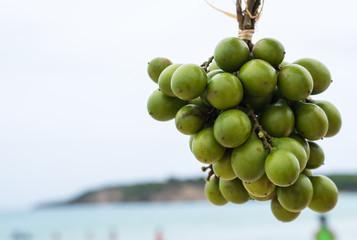 Guinep Caribbean Fruit