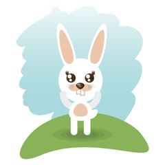 cute rabbit animal wildlife vector illustration eps 10