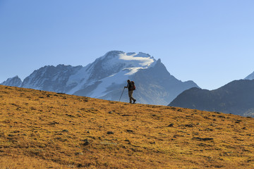 Hiker wallking along Hill of Nivolet. Gran Paradiso national park. Alpi Graie