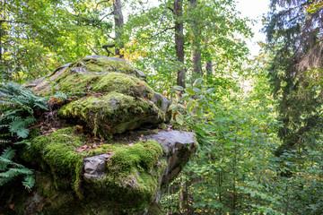 Nature monument Chertovo Gorodische. Kozelsk, Russia