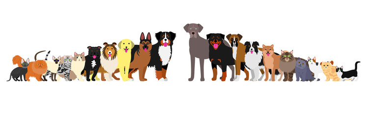 Border of dogs and cats arranged in order of height