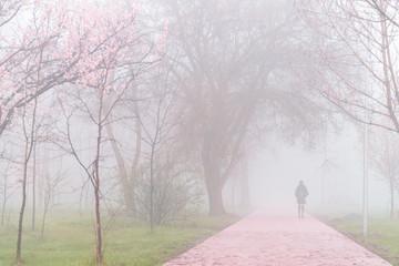 yang girl walk through park in fog