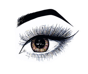 Beautiful open female eye with long eyelashes is isolated on a white background. Makeup template illustration. Color sketch felt-tip pens. Handwork. Fast schematic drawing
